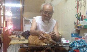 Hết bố mẹ rồi đến ông nội yêu mèo hơn con cháu trong nhà