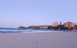 Mùa này sợ biển động, cứ đi bãi biển Manly ở Úc để cảm nhận thanh bình