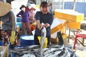 Cá chết dày đặc ở Bình Sơn vì nạn… hút cát?