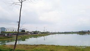Nghệ An: Kỷ luật 1 loạt cán bộ, đảng viên vì hồ sen bị 'hô biến' thành...hồ nuôi cá?