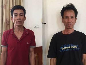 Táo tợn dùng ô tô đi trộm bò ở Quảng Bình rồi mang ra Hà Tĩnh tiêu thụ