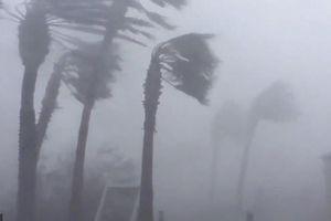 Siêu bão Michael đổ bộ vào Mỹ với sức tàn phá khủng khiếp