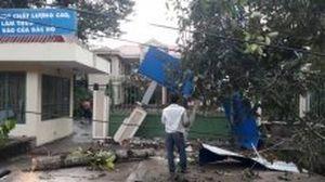 Lốc xoáy gây thiệt hại nhiều nơi tại Đồng Nai