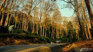 10 điểm đến mùa thu đẹp nhất Nghệ An