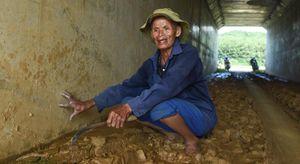 Gần 20 cây cầu thấm dột trên cao tốc 34.500 tỷ Đà Nẵng - Quảng Ngãi