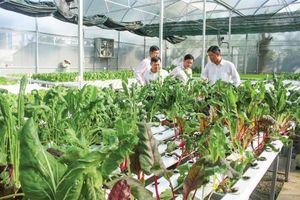 Nông nghiệp ĐBSCL chuyển mình với công nghệ 4.0Bài cuối: Nông nghiệp 4.0 'thúc' tái cơ cấu nông nghiệp
