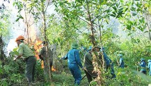 Nho Quan tổ chức diễn tập chữa cháy rừng 2018