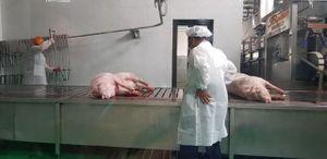 Khánh thành tổ hợp sản xuất và chế biến thịt lợn lớn nhất miền Bắc