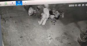 Tranh cãi trong chuyện đổ rác, hàng xóm cầm rác ném nhau túi bụi