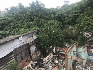 Hồ Linh Quang (Đống Đa): Bao giờ mới thành 'phổi xanh'?