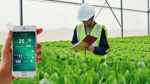 Việt Nam cần có chính sách hướng đến nông nghiệp công nghệ 4.0