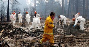Cháy rừng California: Hơn 600 người mất tích, tăng gấp đôi chỉ sau 1 đêm