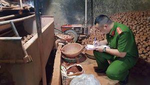 Rà soát hàng hóa, ngăn chặn 'nông sản ngoại đội lốt Việt'