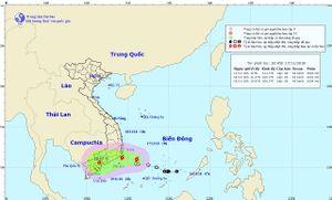 Bão số 8 giật cấp 10 di chuyển chậm vào các tỉnh từ Ninh Thuận đến Bà Rịa - Vũng Tàu