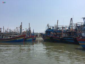 Bà Rịa-Vũng Tàu cấm tất cả các phương tiện thủy ra khơi