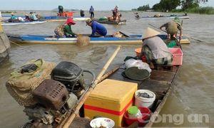 Chợ cá ven sông
