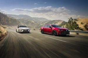 Trọn bộ ảnh chính thức của Toyota Avalon và Camry TRD 2020