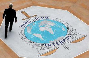 Nghị sĩ Mỹ: 'Để người Nga làm Chủ tịch Interpol như thả cáo vào chuồng gà'
