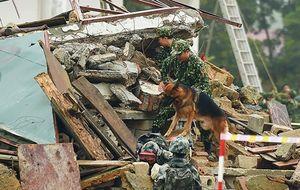 Việt Nam và Trung Quốc tổ chức diễn tập chung về cứu trợ thảm họa