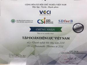 EVN lọt tốp 100 doanh nghiệp bền vững tại Việt Nam năm 2018