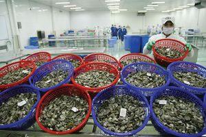 Hiệp định CPTPP sẽ giúp nâng tầm nền kinh tế Việt Nam