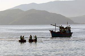 Tăng cường kiểm tra, ngăn chặn khai thác hải sản trái phép