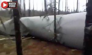 Thợ săn Nga phát hiện vật thể ngoài hành tinh trong rừng sâu