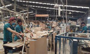 Hiệp định VPA/FLEGT về gỗ hợp pháp: Doanh nghiệp sẵn sàng, cơ quan quản lý còn băn khoăn