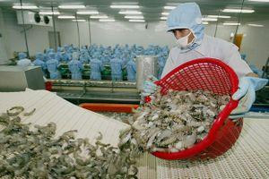 Hoa Kỳ là thị trường xuất khẩu lớn nhất của Việt Nam