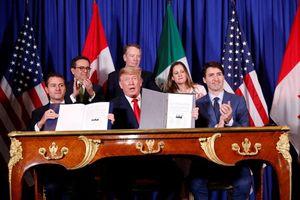 Những khoảnh khắc ấn tượng của các nhà lãnh đạo G20
