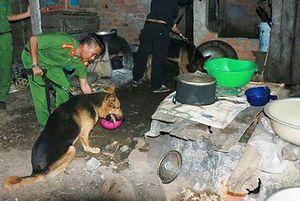 Đắk Nông: Truy bắt nhóm đối tượng đánh chết người