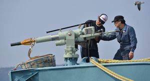 Nhật Bản chính thức nối lại hoạt động săn bắt cá voi thương mại