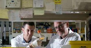 Tìm ra phương pháp rút ngắn quá trình điều chế vắcxin xuống còn khoảng 26 tuần