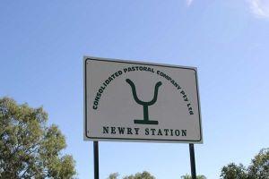 Một công ty Việt Nam mua ba trại chăn thả gia súc phía bắc Australia