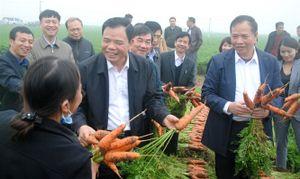 Bộ trưởng Nguyễn Xuân Cường: 'Nông dân chúng ta ngày càng sáng tạo'