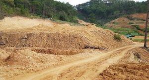 Để mất đất rừng Chủ tịch xã xin từ chức