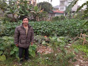 Hà Nội: Hơn 3 thập kỷ gõ cửa chính quyền đòi mảnh ao của cha ông trong vô vọng?