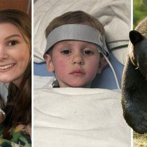 Đi lạc trong rừng suốt hai ngày, cậu bé 3 tuổi được gấu đen 'bảo vệ'