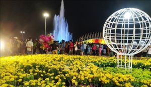 Tiền Giang khai mạc đường hoa, chợ hoa mừng Xuân Kỷ Hợi năm 2019