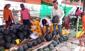Cận cảnh chợ dưa Tết lớn nhất miền Tây