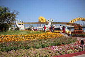 Trẩy hội 'cầu Vàng' bên đường hoa Xuân Đà Nẵng