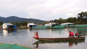 Lần đầu tiên dân làng chài Kon Tum đón Tết trên bờ