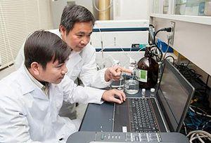 Nhà khoa học Việt tìm ra chất chống tiểu đường trong gạo trắng