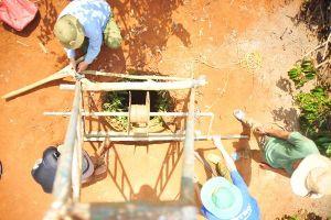 Gia Lai: Nông dân oằn mình 'vắt nước' cứu cây cà phê