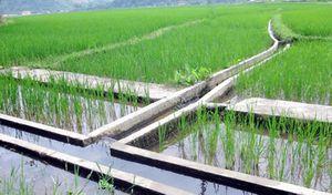 Lào Cai: Sai phạm tiền tỷ khi thực hiện chương trình giảm nghèo