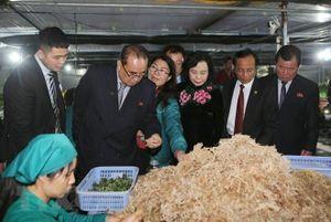 Phó Chủ tịch Triều Tiên ấn tượng với nữ lãnh đạo hợp tác xã