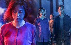 'Hai Phượng': Giá như Ngô Thanh Vân chăm chút logic kịch bản như phần hành động thì thuyết phục hơn nhiều