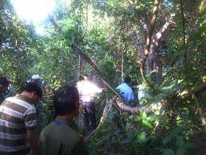 Phát hiện thi thể người đàn ông trong rừng sau nhiều ngày mất tích