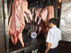 TP HCM: Thắt chặt kiểm soát thịt lợn ứng phó với dịch tả Châu Phi
