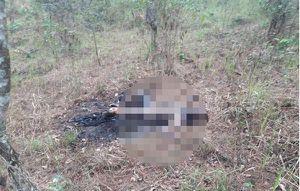 Người dân hoảng hốt phát hiện thi thể cháy đen cạnh bãi rác